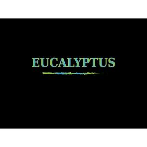 DEA Aroma - Eucalipto