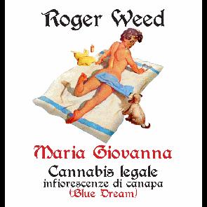 Roger Weed Maria Giovanna – Blue Dream CBD Alto 1g