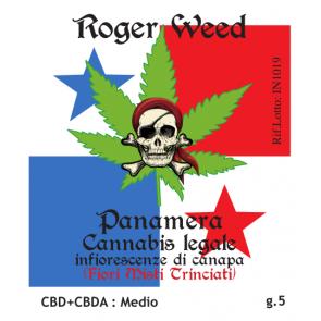 Roger Weed Panamera