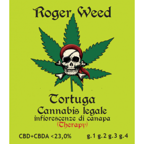 Roger Weed Tortuga 1g