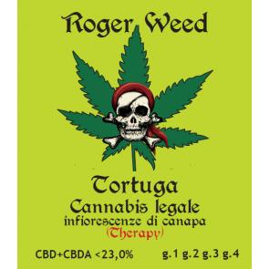 Roger Weed Tortuga 2g