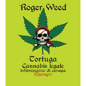 Roger Weed Tortuga - Therapy CBD Alto 1g